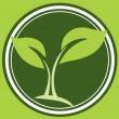 A Natur! Biobolt - Oktogon