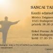 Sancai Taiji Iskola kezdő edzései