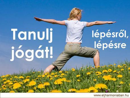 jógatanfolyam, jóga kezdőknek, kezdő jóga